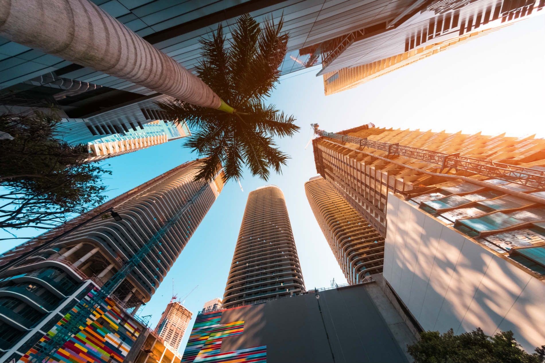 real estate agent in Miami